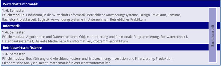 studienstruktur wirtschaftsinformatik